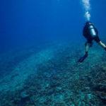 Зафиксирована гибель рифов Мальдивского архипелага