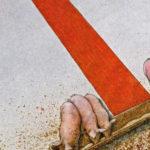 Разоблачение коррупции связали с риском нищеты