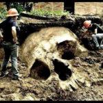 В Китае обнаружили останки людей-великанов