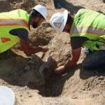 В США в центре города найден динозавр