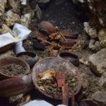 В Гватемале нашли гробницу древнего правителя майя