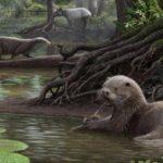 Сила укуса ископаемой гигантской выдры удивила ученых