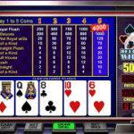 Как играть в видео – покер