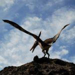 Обнаружены окаменелости доисторического птенца