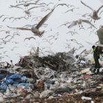 Российские ученые научились перерабатывать мусор безвредных выбросов