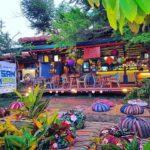Flotsam and Jetsam Artist Beach Hostel in La Union, Philippines