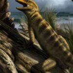 Палеонтологи обнаружили древнейшего предка всех ящериц измей