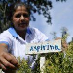 Вскрылась страшная опасность аспирина