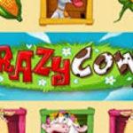 Новый клуб Maxbetslot и новый автомат Crazy Cows