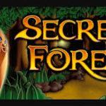 Игровой автомат Secret Forest: отличия от классического слота Lucky-hunter