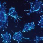 Наночастицы вернули активность противораковой системе клетки
