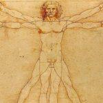 Названы «лишние» органы вчеловеческом теле