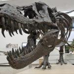 Раскрыта тайна вымирания динозавров