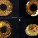 Доисторический янтарь признали подделкой